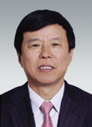 Yi Jin Vice President, Deputy General Manager of China FAW Group Corporation