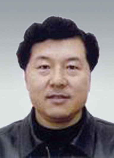 Jingpu Bai Vice President, Deputy General Manager of Angang Steel Group Corporation